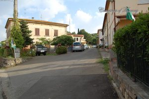 Baccanella